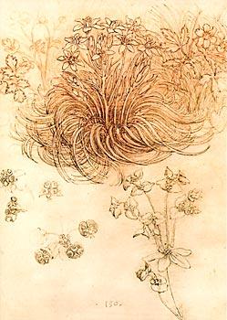 L onard de vinci dessins et manuscrits - Dessin de leonard de vinci ...